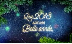 Que 2018 soit une belle année.jpg